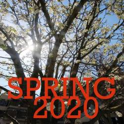 Soring 2020 over a tree background