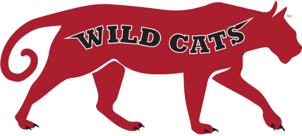 A full body of a red, panther-like cat with the words Wild Cats across the body in black